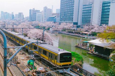 東京神楽坂に本部のある「東京理科大学」 NMRパイプテクター®-NMRPT-採用によるさらなるコスト削減 NMRパイプテクターを採用することによって大幅にコストを削減 NMRパイプテクターを採用することによって大幅にコストを削減 東京理科大ではもともと10~15年後に建て替えを予定していた校舎や施設の配管の延命を目的にNMRパイプテクター®が導入されました。 延命せず配管を更新する事も検討されましたが、NMRパイプテクター®を採用することによって大幅にコストを圧縮する事ができました。 ところで実現できたコスト削減はそれだけではありません。 当初、建て替え後の建物にはステンレス鋼管の使用が検討されていました。 しかし、NMRパイプテクター®の高い赤錆防止性能が実証された事から、NMRパイプテクター®を設置すればワンランク下の配管でも問題ないだろうと判断され、「塩化ビニルライニング鋼管+NMRパイプテクター®」という構成で配管周りの設計は見直されました。 はじめにお話しした通り、ステンレス鋼管は大変高価ですからその使用を避けられたことはコスト面で非常に大きな貢献です。 加えて、旧校舎で使用されているNMRパイプテクター®を移設すればよいので、NMRパイプテクター®を追加購入する必要もなく、最低限のコストで強固な配管の防錆を実現することができました。 NMRパイプテクター®-NMRPT-の優れたコストパフォーマンス NMRパイプテクター®は一般的な給水管であれば、配管更新費用の1/10~1/5の費用で設置可能です。 実例を挙げますと、日本赤十字社旧医療センターでは当初試算されていた配管更新費用(2億円)の10%以下の費用でNMRパイプテクター®を導入し、配管の赤錆問題を解決する事が出来ました。 NMRパイプテクター®は、なぜこのように低コストでかつ断水を伴うような大規模な設置工事を要することなく導入可能なのでしょうか。 その秘密は日本システム企画株式会社が独自に開発した「NMR(磁気共鳴)工法」にあります。 「NMR(磁気共鳴)工法」とは NMRパイプテクター®は特定の電磁波によってNMR(磁気共鳴)を引き起こし、配管内の水の水分子に含まれる自由電子(水和電子)を水の運動エネルギーで剥離させ、化学変化により赤錆を黒錆に還元する事を行います。 そしてその効果は通常の給水管であれば150メートルほど持続します。 そのため基本的には建物一棟につき、配管一系統にNMRパイプテクター®を1台設置すれば良く、 ポンプ直送方式や圧力水槽方式の建物であれば給水ポンプの直後に、高架水槽方式であれば高架水槽の直後に装置を設置するだけで各家庭に延びる給水管まで防錆する事ができます。 赤錆を黒錆に変化させるNMRパイプテクター®-NMRPT- 先程少しお話ししましたNMR(磁気共鳴)について詳しくお話しいたします。 水の分子は、1つの酸素の原子と2つの水素の原子でできています。 その水分子がたくさん集まり、大きな凝集体となって水を作り上げています。 NMRパイプテクター®は、装置から出る電磁波によって、水分子の大きな凝集体を小さな凝集体に変化させます。 水分子の凝集体が小さく変化し、その水が流れるエネルギーで水中から自由電子である水和電子が飛び出しますが、この水和電子によって赤錆は黒錆に変化します。 黒錆は鉄を保護する働きがあり、配管内部で赤錆の黒錆化が進むと、黒錆は赤錆の体積の1/10の大きさの為、赤錆閉塞などは縮小改善し、配管は防錆され、そして強化されます。 NMRパイプテクター®-NMRPT-は設置工事以外の工程が必要ない 赤錆が黒錆に変わるという事は赤錆を除去するための洗浄工程が必要ないという事を意味します。 そして黒錆の皮膜は赤錆の腐食から鉄を守る働きがあるので、内部を保護するための薬剤もいりません。 このように「NMR工法」という日本システム企画株式会社が独自に開発した仕組みによって、極めて少ない工程と資材で建物全体の配水管の更正をNMRパイプテクター®は実現しているのです。 核磁気共鳴(NMR) 特定の電磁波を水分子に与えると、磁石のようにN極とS極に分極している水分子の電子核が共鳴振動を起こして回転運動をします。この現象を核磁気共鳴(NMR)といいます。 まとめ 住まいのイメージ NMRパイプテクター®は様々な種類の配管に柔軟に対応可能です。 ローコストながら非常に優れた防錆性能をもち、配管更新に替わる手段として多くの建物オーナー様よりご好評頂いております。 配管の赤錆トラブルにお困りの方は、ぜひ日本システム企画株式会社までお気軽にお問い合わせくださいませ。 独自開発の「NMR工法」によって、お客様の住まいに安心をお届け致します。 関連情報